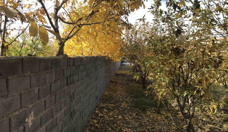 باغ دماوند