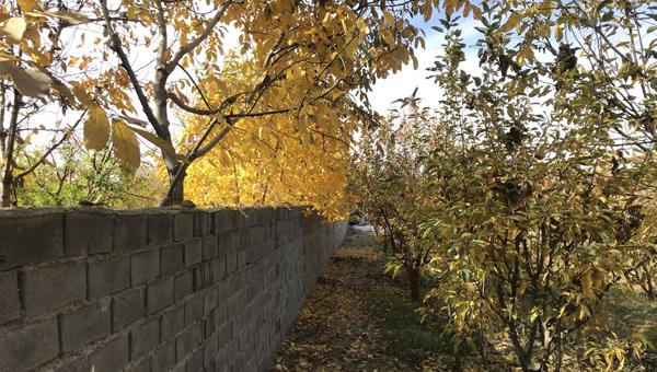 باغ 1550 متری در فاز 1 آبسرد